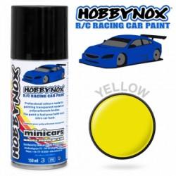 Gul R/C Racing Car Spray...